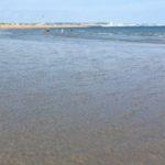 Profile picture of Beach pebble